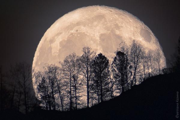 В ночь на 8 апреля жители Каменск-Уральского смогут увидеть суперлуние. Спутник Земли максимально приблизится на нашей планете...
