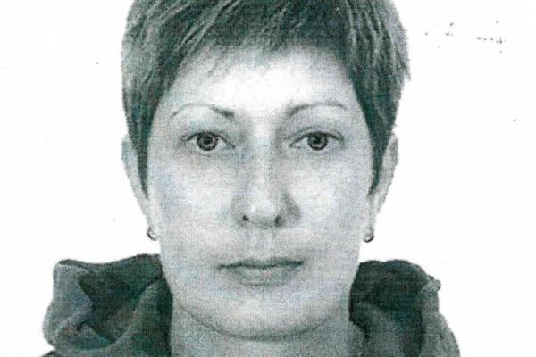 В Каменске-Уральском ищут женщину, которая обматерила и избила судебного пристава...