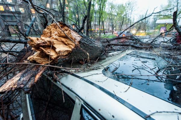 МЧС объявило о штормовом предупреждении для области и Каменска-Уральского 19 сентября. Почасовой прогноз...