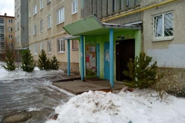 В Каменске-Уральском начали массово избавляться от новогодних деревьев...