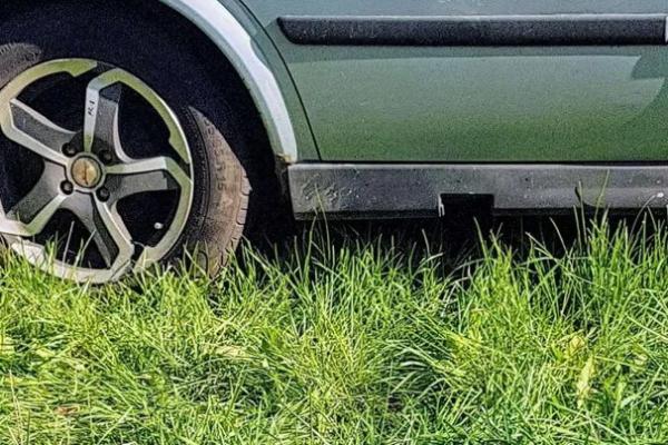 Благодаря бдительной соседке, жителя Каменска-Уральского оштрафовали за парковку на газоне...