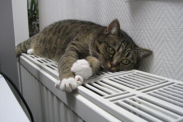 Жители Каменска-Уральского почти перестали жаловаться на холодные батареи...
